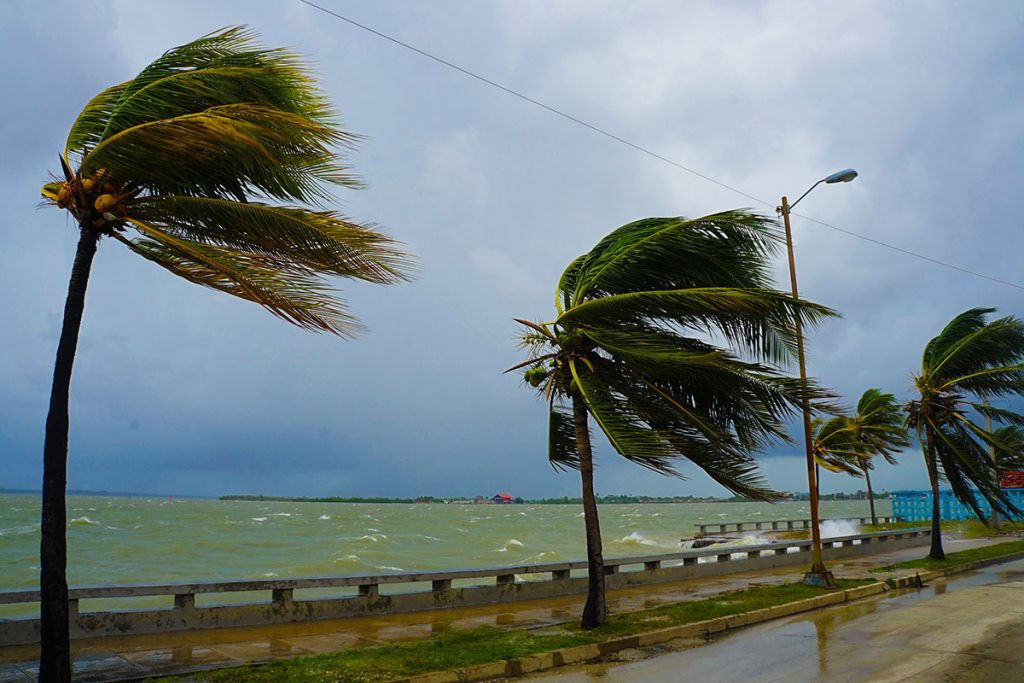 Hurricane/Windstorm Claims